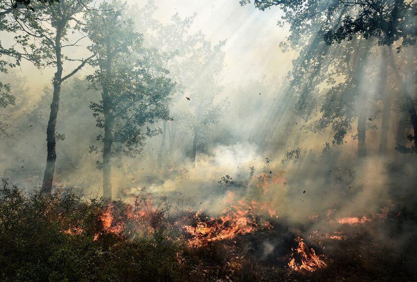 Carte Risques d'Incendies