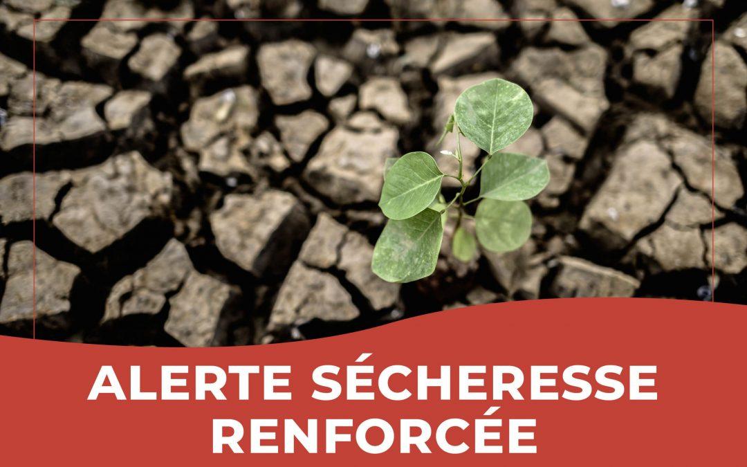 Alerte sécheresse renforcée